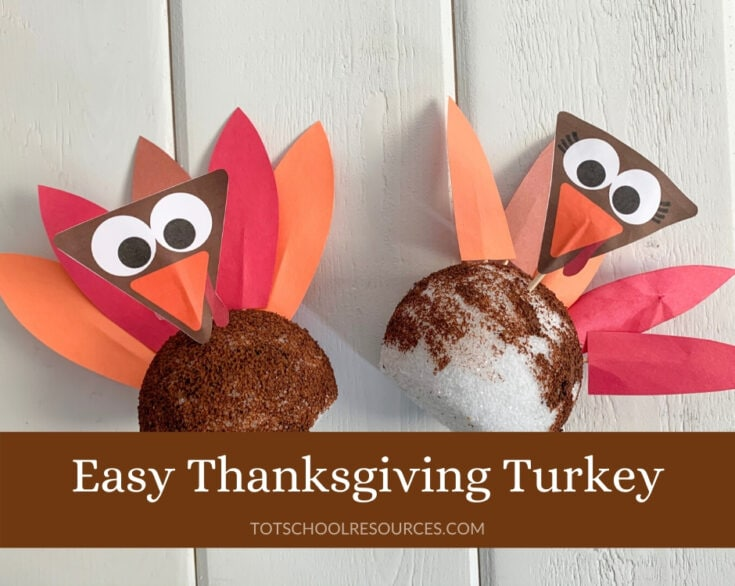 Easy Styrofoam Turkey Craft
