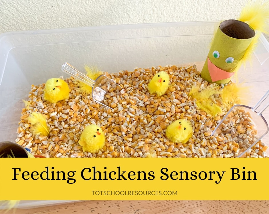 Chicken Sensory Bin title image