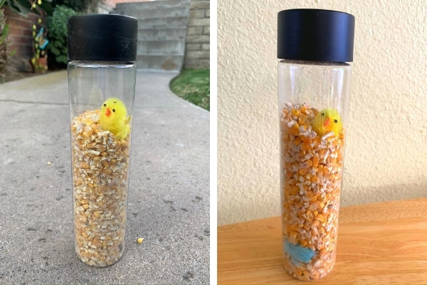 chicken sensory bottle