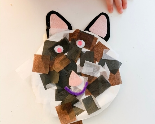 paper plate cat craft for preschool