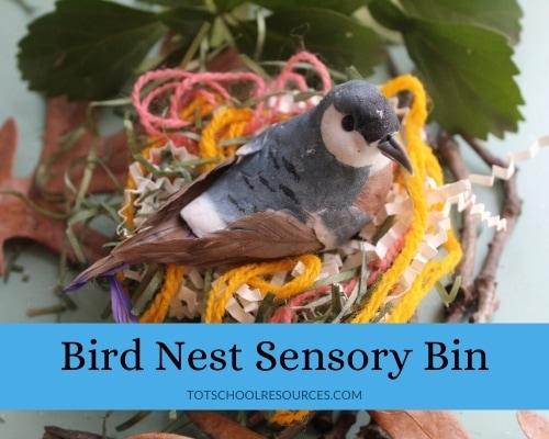 Bird Nest sensory bin for kids