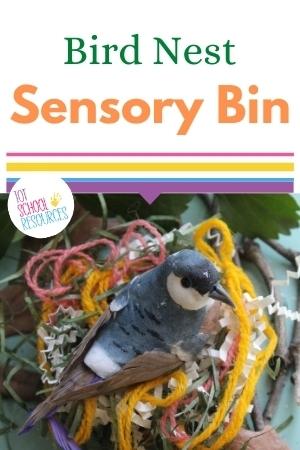 bird nest sensory bin