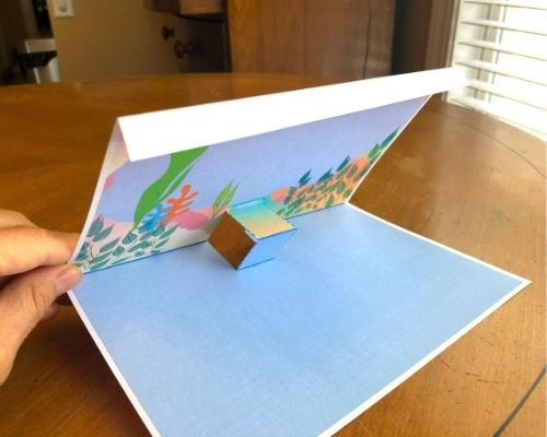 top edge folded down upon solid line